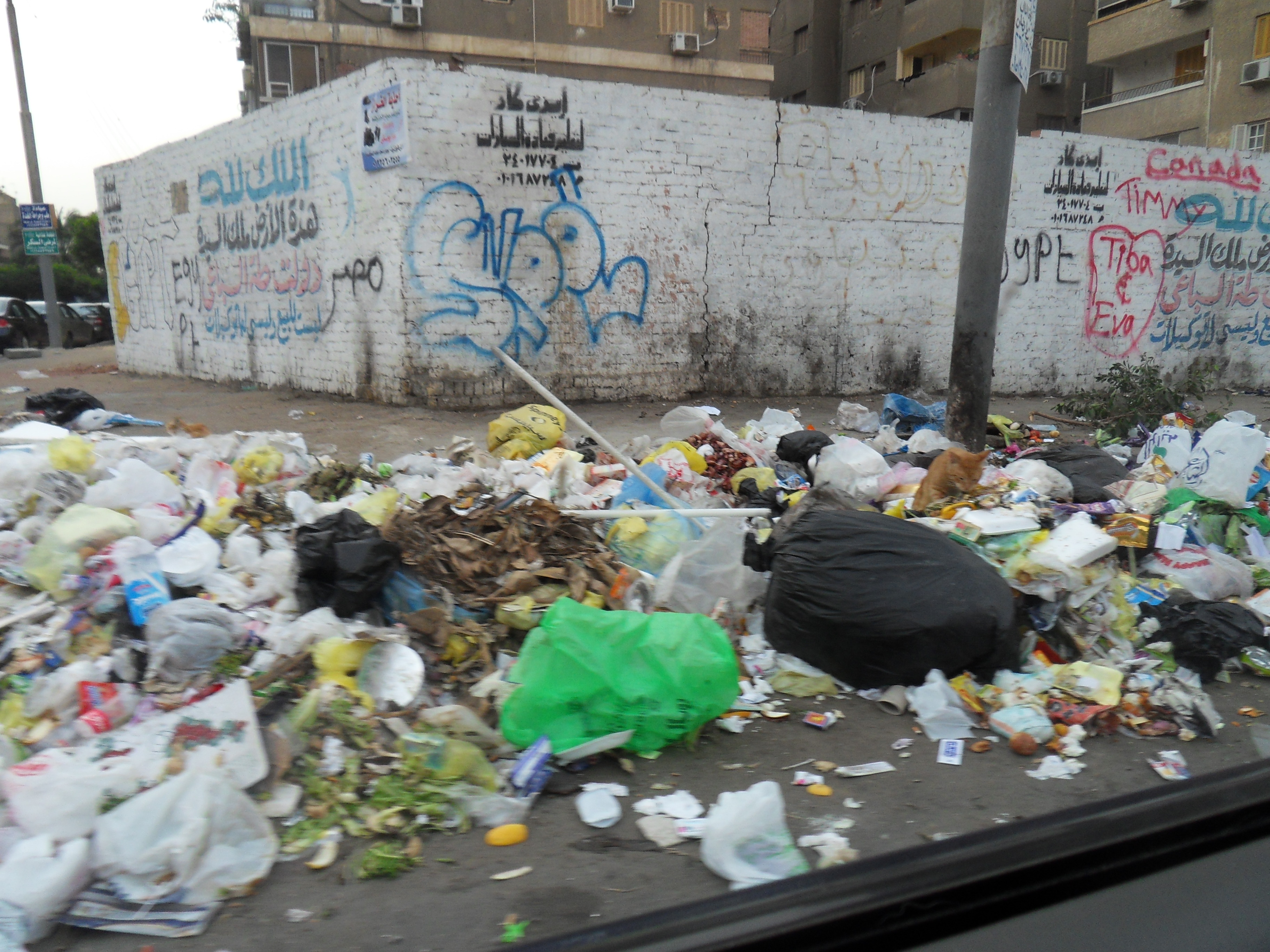 Welcome to Cairo. The City of a thousand garbage piles.