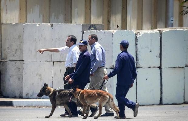 Egyptian bomb disposal experts use dogs as they check the area following a bomb blast in the vicinity of the Ittihadiya palace in Cairo, on June 30, 2014 Credit: AFP