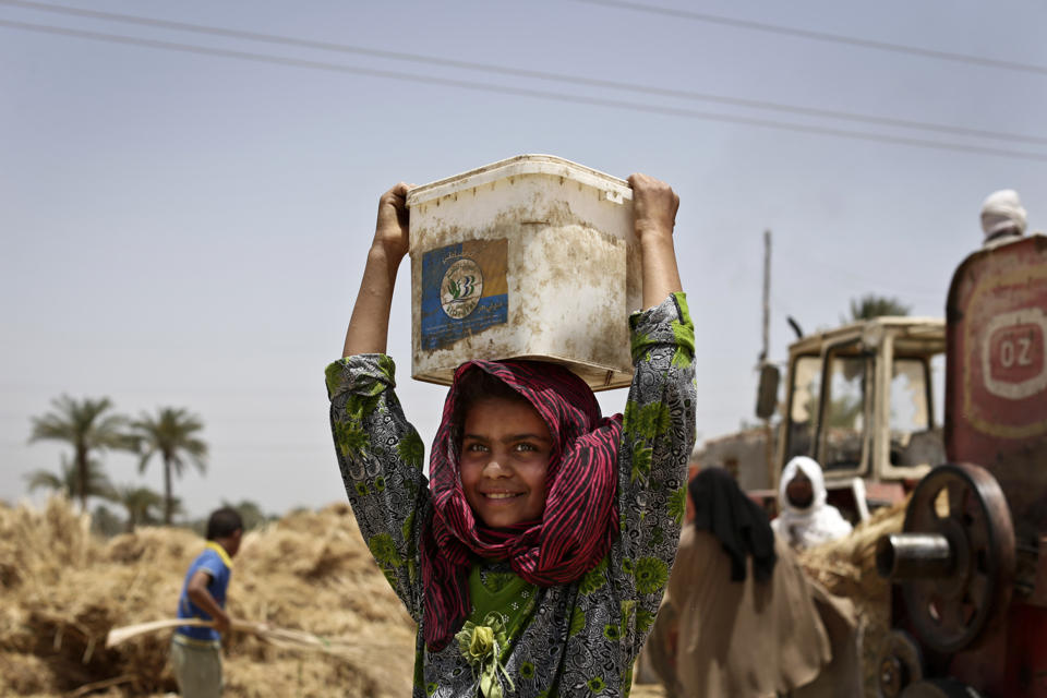 An Egyptian girl harvests wheat on field in Fayoum, 60 miles, (100 kilometers), south of Cairo, Egypt (AP Photo/Hassan Ammar).