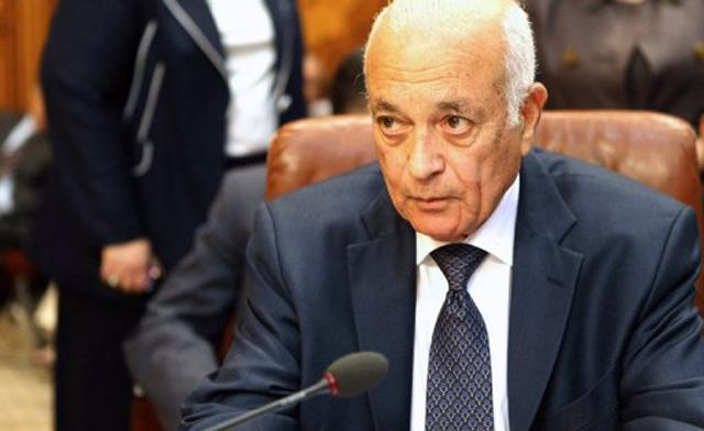 Nabil al-Arabi, Arab League Chief. Photo: AFP