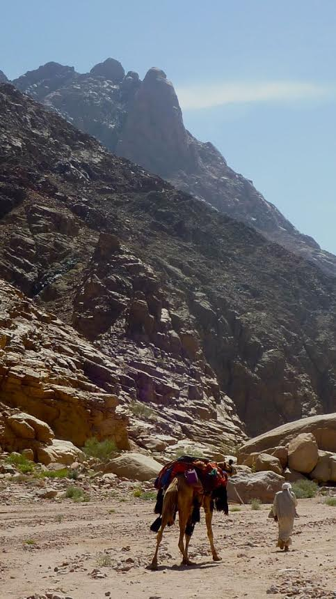 Walking in Wadi Isleh; an old travelling passage between the Monastery of St Katherine and El Tur