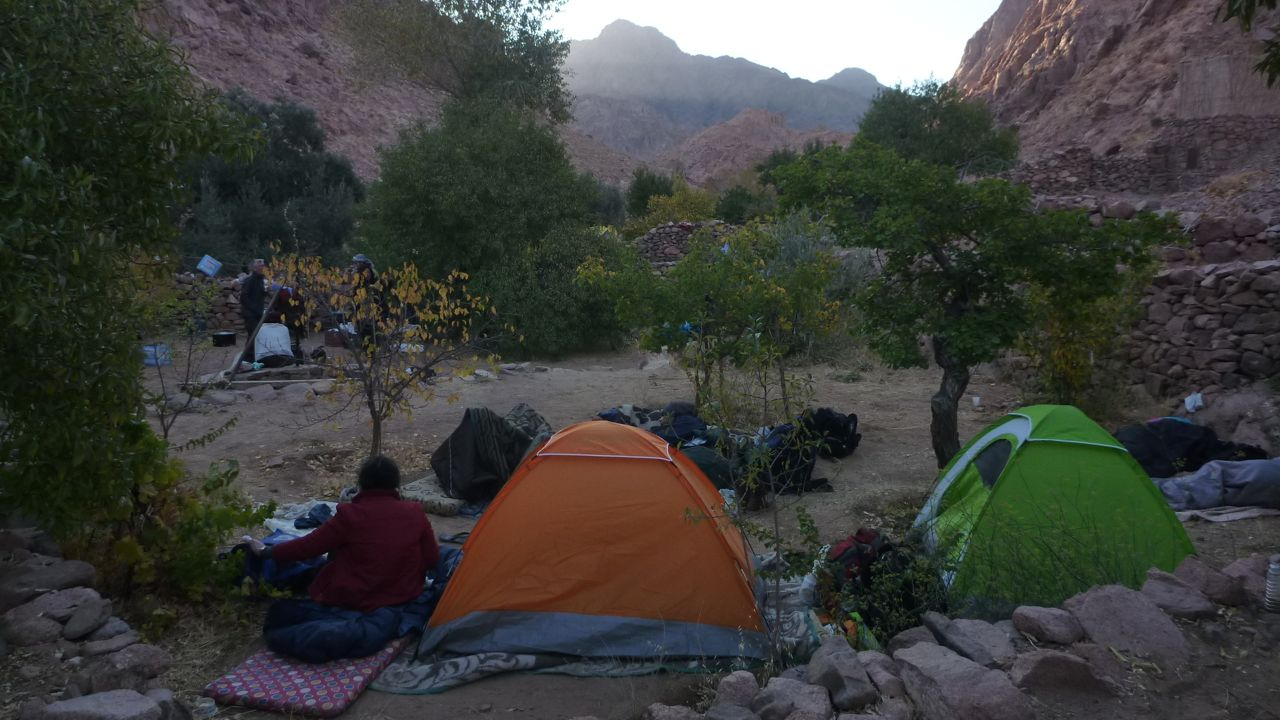 Camping in an ancient Bedouin orchard in Wadi Zawatin