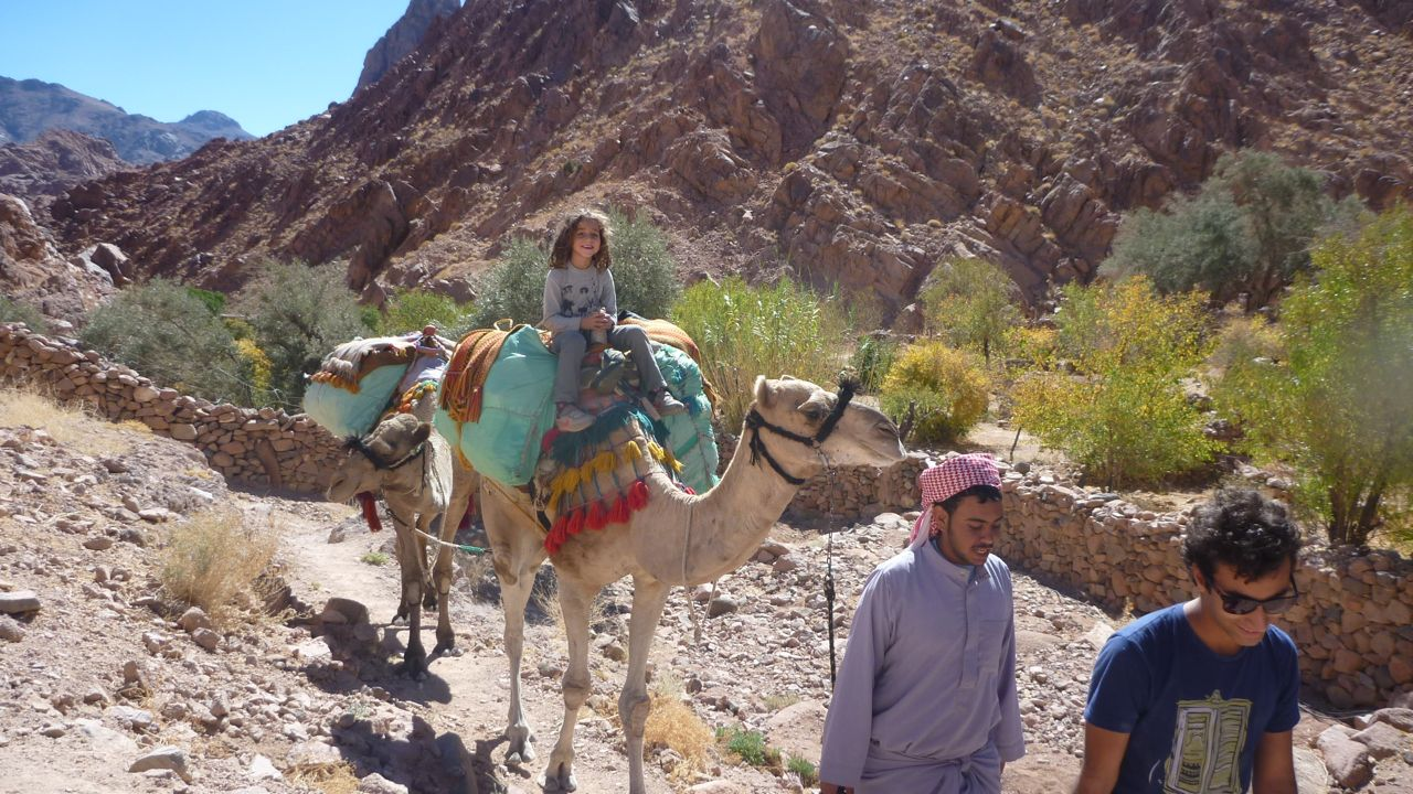 Layla Farid, the youngest hiker of the event, on a camel in Wadi Zawatin