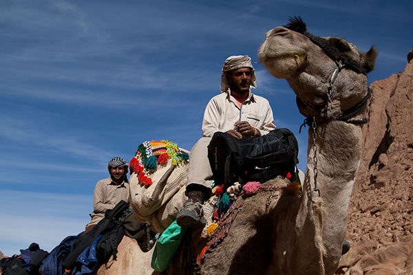 In the rocky paths on St Catherine, camels are still the only possible means for commuting