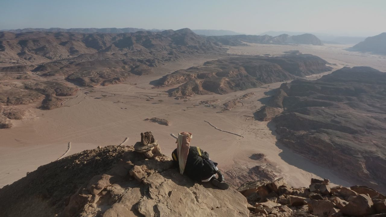 Bedouin guide gazing over the desert