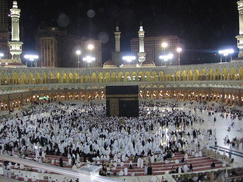 Egyptians dead, 25 injured in bus crash in Saudi Arabia
