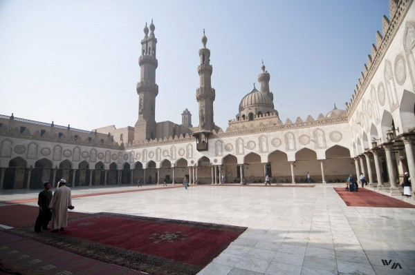 Al Azhar - Egypt's foremost Islamic authority - has recently expressed unease about GID cases