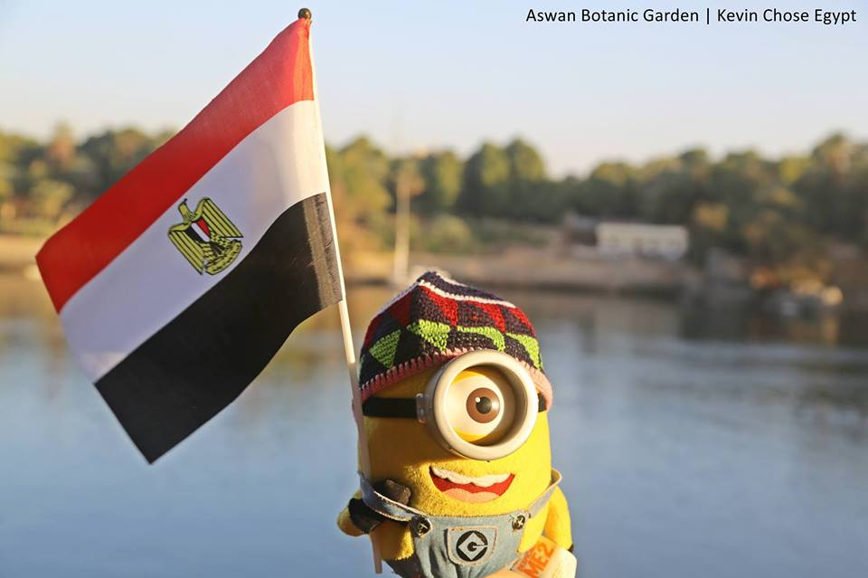 Kevin, originally known as Stewart in the movie 'Despicable Me', has been touring Egypt with his human friend Judy since 2013.