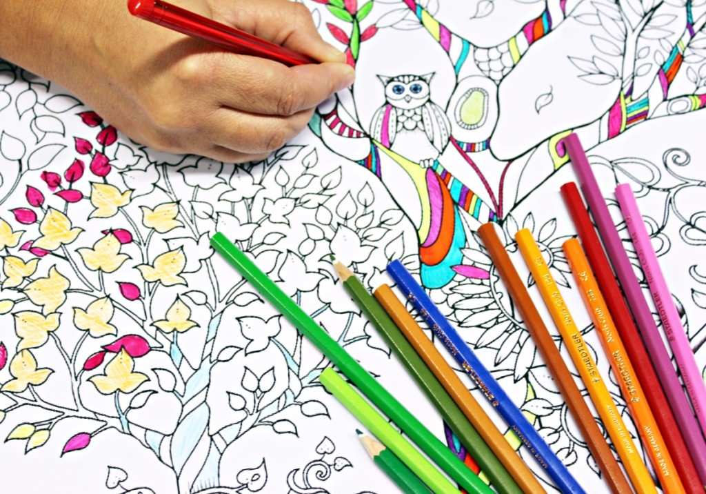 egyptian bookstores have started showcasing a number of european originated anti stress therapy coloring - Color Books