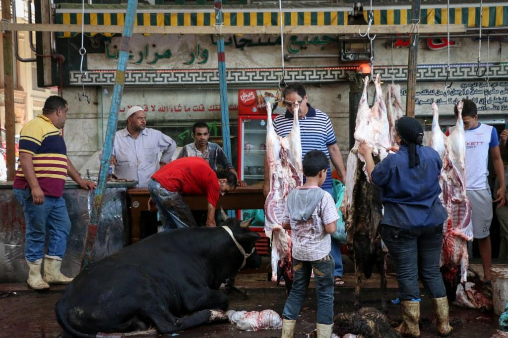 Butchers following the Eid sacrifice of animals, September 24, 2015. PHOTO: Asmaa Abdel Latif, Aswat Masriya.