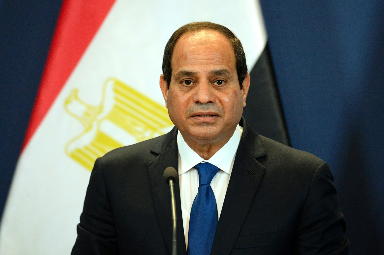 Egyptian President Abdel Fattah al-Sisi speaking at a press conference. (i24 News)