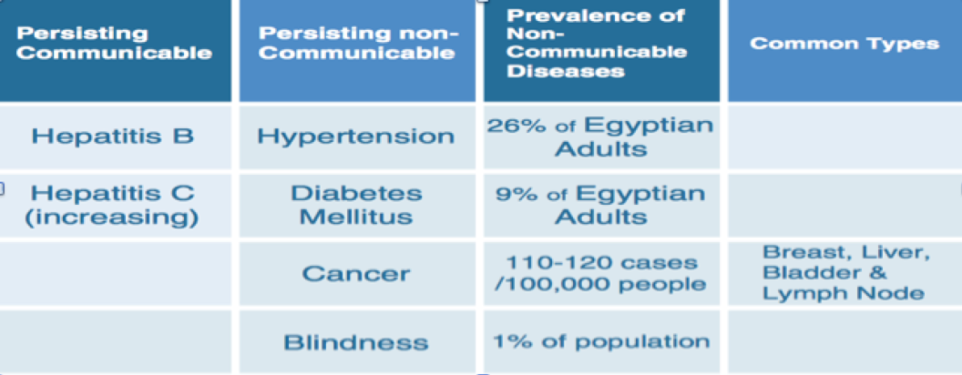 Figure 2: Prevalent Diseases in Egypt Source: WHO 2013