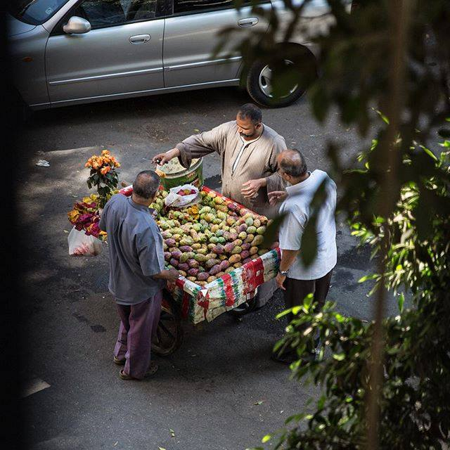 Fruit stall in Zamalek. Credit: Everyday Egypt