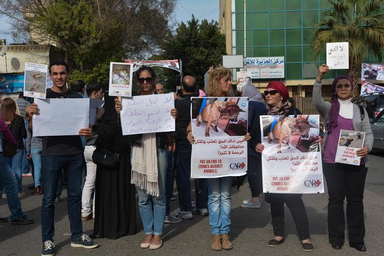 Protestors at Al Ahly club
