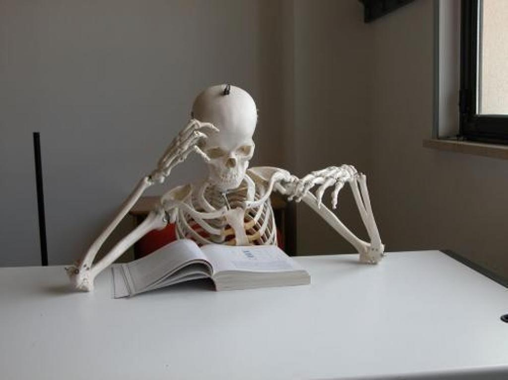 SkeletonReading
