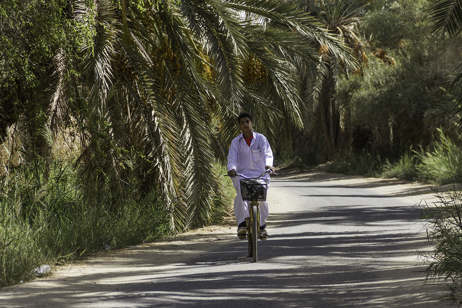 Khaled from Siwa commuting on his bike similar to most visitors and locals