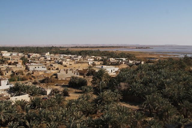 View from the top of the Temple of the Oracle in Aghormi, Siwa. Credit: Enas El Masry