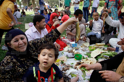 An Egyptian family enjoys a Sham El-Nessim picnic at the International Park in Nasr City. Photo: Ahmed Abdel Fattah, Al-Shorouk