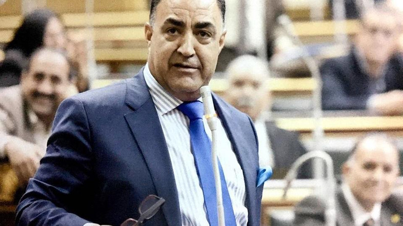 Member of Parliament Elhamy Agina
