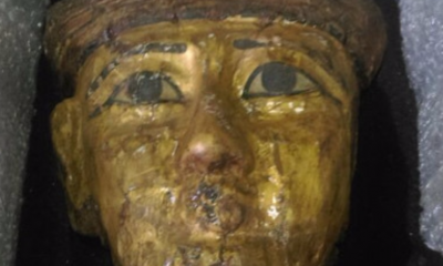 pablo-artifact-mummy-mask