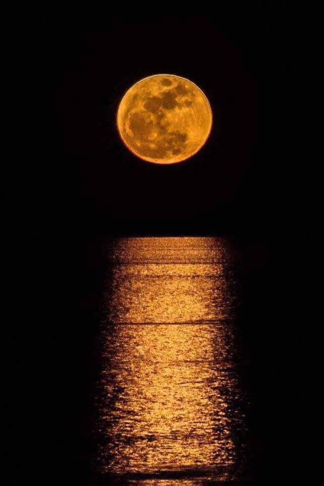 The supermoon over the Red Sea. Photo: Mohamed Salah El Din